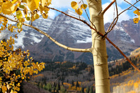 Aspen Maroon Bells in the Fall  I  Forever Butterflies Photography